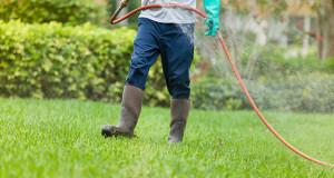lawn_maintenance